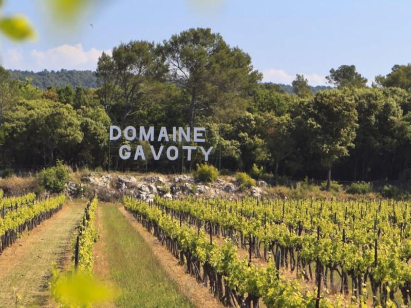 Domaine Gavoty